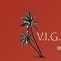 VIG Remodeling Services